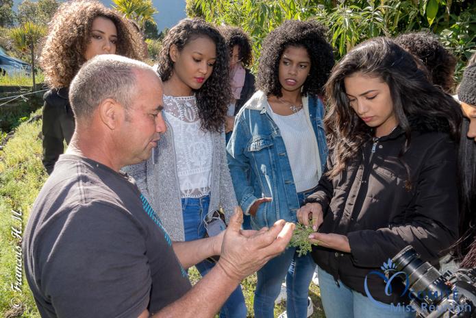 Les 12 candidates découvrent une plantation de lentilles