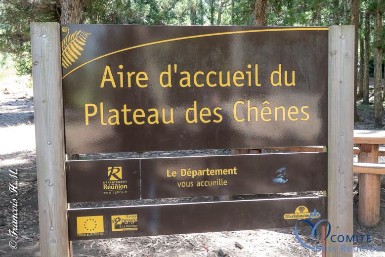 Les 12 candidates en pique-nique au Plateau des Chênes